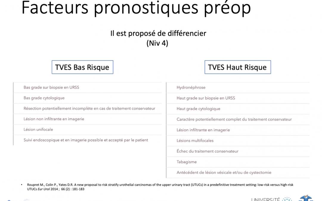 Cours DESIU d'Onco-urologie du Grand Sud – Facteurs de risque et Groupes pronostiques des TVEUS – Dr M. Durand, MD, PhD